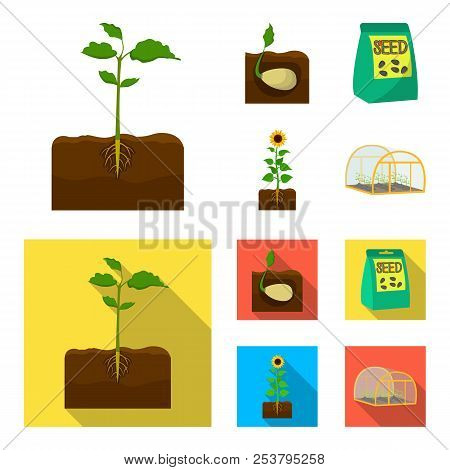 Company, Ecology, And Other Web Icon In Cartoon, Flat Style. Husks, Fines, Garden Icons In Set Colle