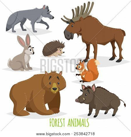 Cartoon Forest Animals Set. Wolf, Hedgehog, Moose, Hare, Squirrel, Bear And Wild Boar. Funny Comic C