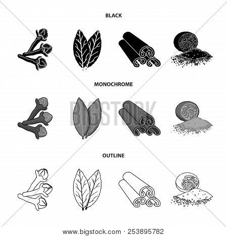 Clove, Bay Leaf, Nutmeg, Cinnamon.herbs And Spices Set Collection Icons In Black, Monochrome, Outlin