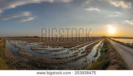 Flooded Rice Paddy And Traditional Mediterranean Farm House, Gigapan Albufera Valencia, Spain