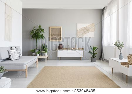Posters On Grey Wall Above White Cupboard In Bright Living Room Interior With Sofa And Carpet. Real