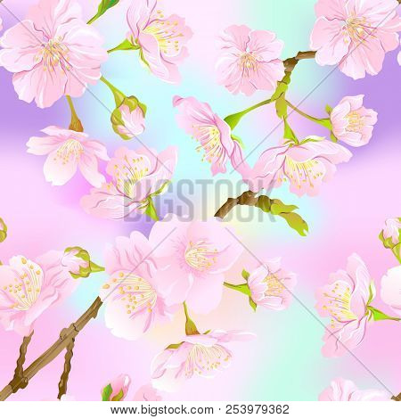 Seamless Pattern, Background With Blooming Cherry Japanese Sakura In Soft Rose Pink Colors. Stock Ve