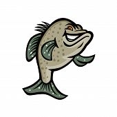 Mascot icon illustration of a crappie, croppie, papermouths, strawberry bass, speckled bass, specks, speckled perch, crappie bass or calico bass, standing up viewed from front done in retro style. poster