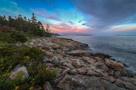 Maine Coastline - Port Clyde, Maine, Usa