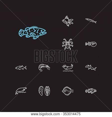 Aquatic Icons Set. Shrimp And Aquatic Icons With Saury, Grouper Fish And Tuna. Set Of Cartoon For We