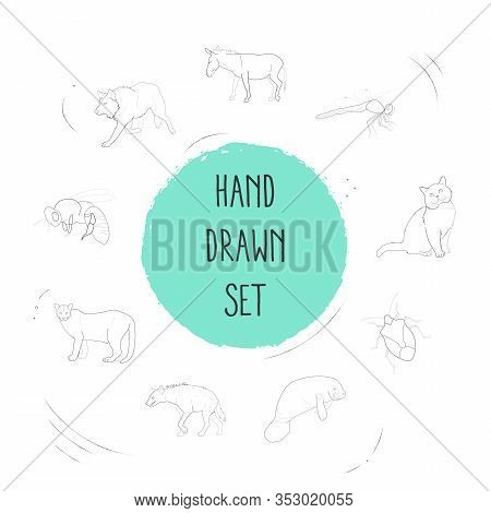 Set Of Animal Icons Line Style Symbols With Hyena, Sea Cow, Dankey And Other Icons For Your Web Mobi