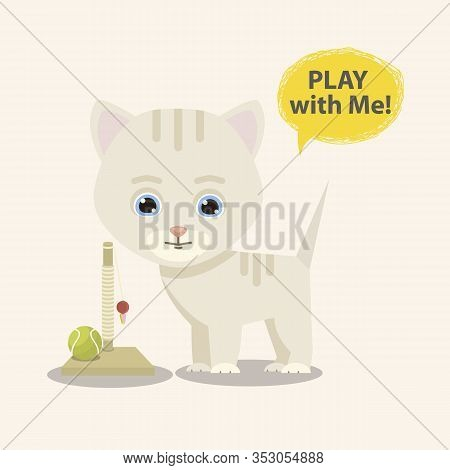 Cat With Toy And Boll Isolated On A White Background.cute Kitty Character Isolated On A White Backgr