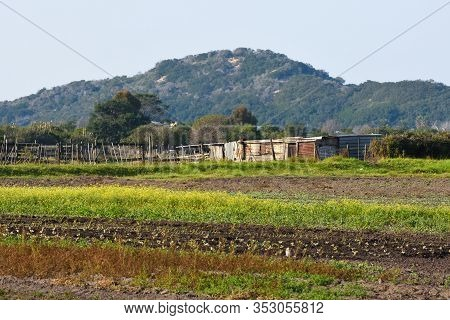 Rural Agricultural Farm Field And Shack, Mossel Bay, South Africa