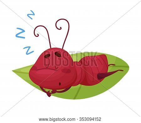 Cartoon Ant Character Sleeping On Green Leaf Isolated On White Background Vector Illustration