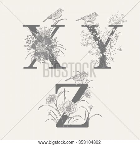 Letters X Y Z, Flowers Peonies, Decorative Herbs And Birds Isolated Set. Vector Decoration. Black An