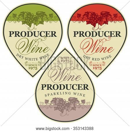 Set Of Vector Wine Labels With Hand-drawn Bunch Of Grapes And Calligraphic Inscription. Collection O
