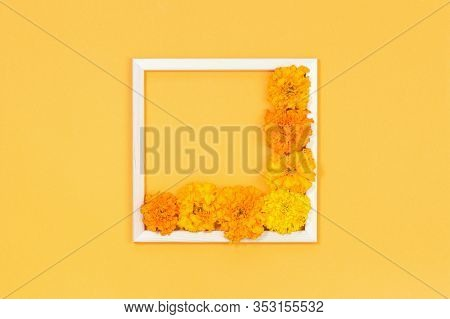 Orange And Yellow Garden Flowers In A Wooden Frame On Saffron Yellow Background. Monochromatic Gift