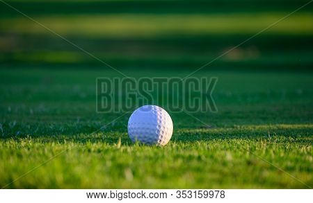 Excellent Well-kept Green Grass Lawn On Large Golf Course, Green Section With Big White Foam Ball Fo