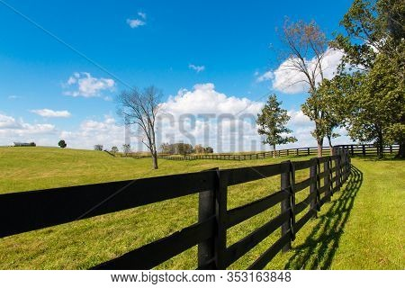 Green Pastures Of Horse Farms. Country Landscape.