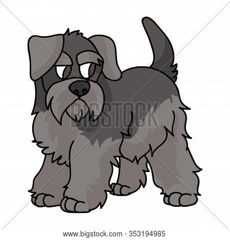 Cute Cartoon Schnauzer Puppy Dog Vector Clipart. Pedigree Kennel Doggie Breed For Dog Lovers. Purebr