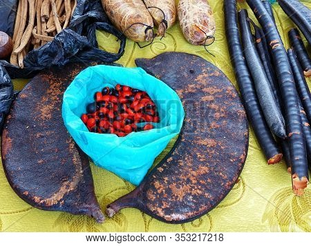 Attributes Of A Shaman For The Recovery Ceremony: Herbs And Tree Branches, Fruits And Seeds Of Amazo