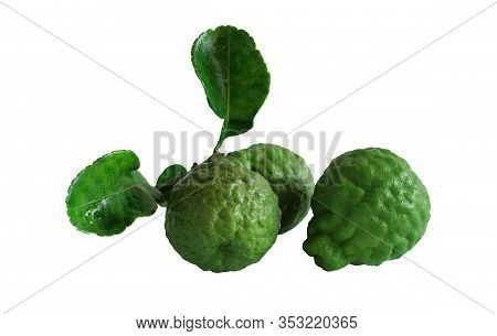 Kaffir Lime, Citrus Hystrix, Makrut Lime Or Mauritius Papeda Fruit Isolated On White With Selective