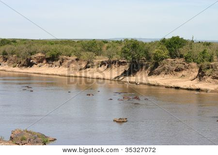 Hippo Pool in Kenya