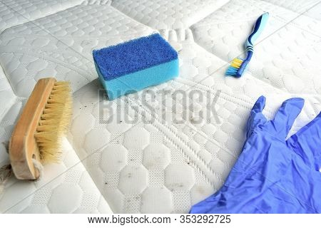 Removing Mold Stains From The Mattress`s Surface. Brush, Sponge, Nitrile Glove, Tooth Brush On Top.