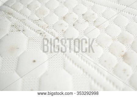 Mildew On A Mattress. Mouldy Stains On A White Fabric.