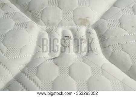 Moisture Causes Mold Growing On The Fabric Of A Mattress.
