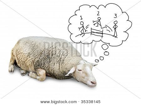 Sleeping Sheep Counting Humans