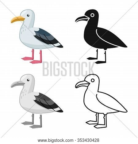 Isolated Object Of Gull And Bird Symbol. Collection Of Gull And Sea Stock Vector Illustration.