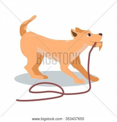 Cartoon Brown Dog Pull Rope Vector Illustration. Cute Playful Puppy Drag Walk Leash. Happy Doggy Wan