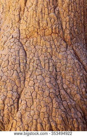 000195- The Hoodoos Of Cathedral Gorge Carry The Beautiful Texture And Patterns Of Aging, Cracking C