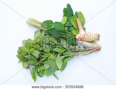 Thai Basil And Lemongrass, Galangal And Leaf Of Bergamot (kaffir Lime) On White Background.