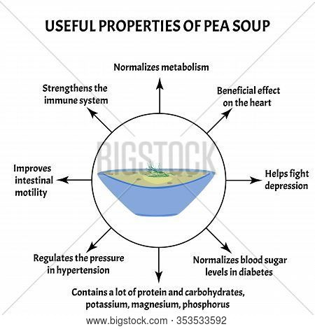 International Soup Day April 5th. Useful Properties Of Pea Soup. Infographics. Vector Illustration O