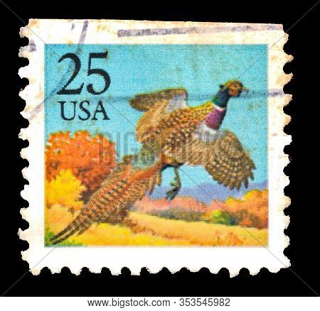 Unaited Staite Of America - Circa 1988: Common Pheasant (phasianus Colchicus) Postage Stamp From The