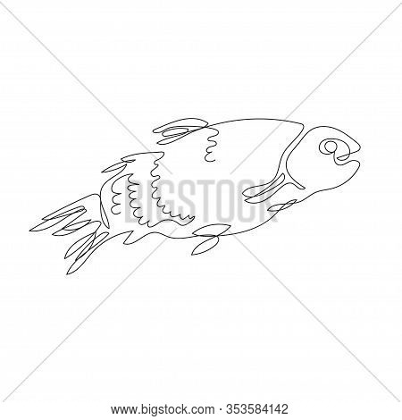 The Fish Is Drawn In One Line. Trout. Continuous Line.