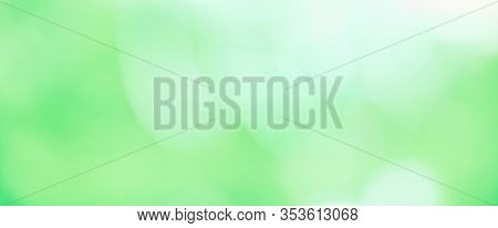 Beautiful Nature Blurred Green White Spring Background. Soft Abstract Texture With Copy Space For De