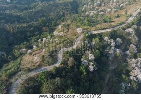 Aerial View Of Asphalt Winding Road In The Forest Mountain For Background.scenic View Of Sharp Curve