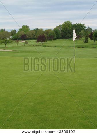The Golf Green