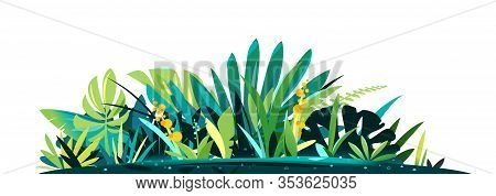 Decorative Composition Of Different Jungle Plants On Ground, Group Of Green Plants On The Sunny Lawn