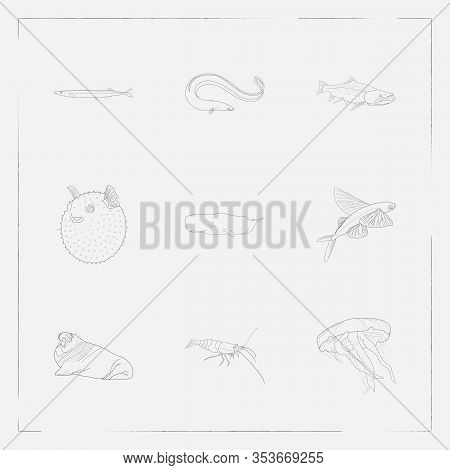 Set Of Fish Icons Line Style Symbols With Puffer Fish, Jellyfish, Cetacean And Other Icons For Your