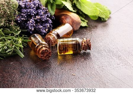 Fresh Herbs From The Garden And The Different Types Of Oils For Massage And Aromatherapy On Table. S