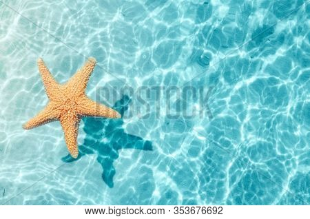 Starfish On The Summer Beach In Sea Water. Summer Background. Summer Time.