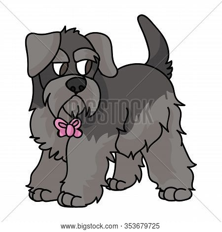 Cute Cartoon Schnauzer Puppy With Pink Bow Vector Clipart. Pedigree Kennel Doggie Breed. Purebred Do