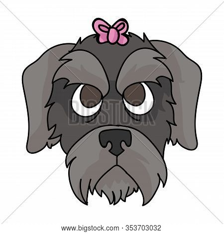 Cute Cartoon Schnauzer Dog Puppy Face With Pink Bow Vector Clipart. Pedigree Kennel Doggie Breed. Do