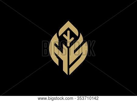 Initial Letter H And R With Abstract Leaf Logo Sign Symbol