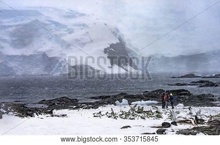 Charlotte Bay, Antarctica - December 26, 2019   Snowing Gentoo Penguins Whaling Camp Tourists Snow M
