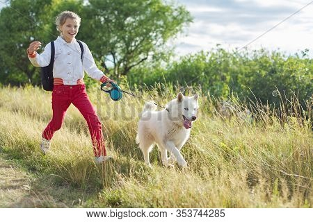 Walk Girl With Dog In Nature, Run Child With Pet In Sunny Meadow. Active Healthy Lifestyle, Walking