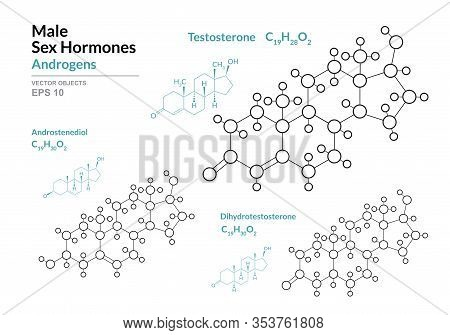 Testosterone, Androstenediol, Dihydrotestosterone. Male Sex Hormones. Structural Chemical Formula An