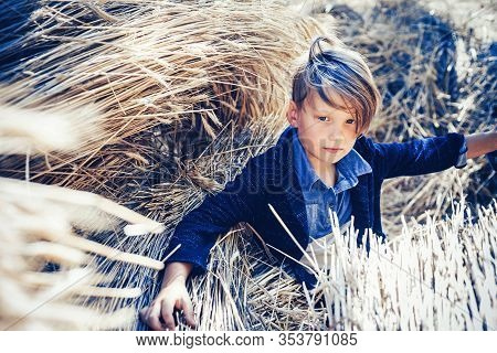 Kid On An Autumn Holiday In The Farm. Bye Summer - Hi Autumn. Kid Boy Holding Gold Leaf And Lies On
