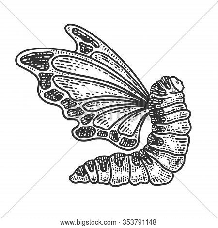 Caterpillar With Butterfly Wings Sketch Engraving Vector Illustration. T-shirt Apparel Print Design.