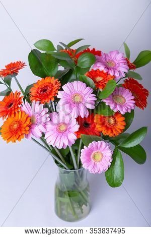 Bouquet Of Gerberas. Pink, Orange And Red Gerbera In A Vase. Congratulation, Feast, Present.