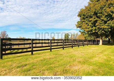 Beautiful Country Landscape With Colorful Tree And Pastures Of Horse Farms.
